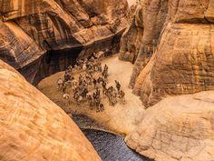 Guelta d'Archei, o mais famoso oásis do deserto do Saara. Fica no planalto de Ennedi, no Chade.