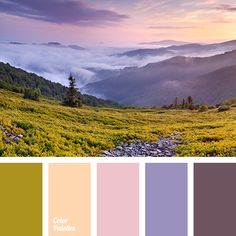 Color Palette #3394