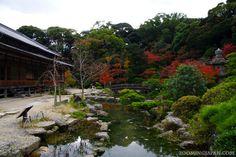 A beautiful Japanese garden ...