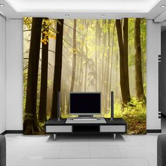 Barato Personalizado 3D estereoscópico papel de parede mural paisagem papel de parede da sala sofá TV parede sol de revestimento de parede, Compro Qualidade Papéis de parede diretamente de fornecedores da China:      Detalhes do produto              Tamanho                        :        68$                       É o preço