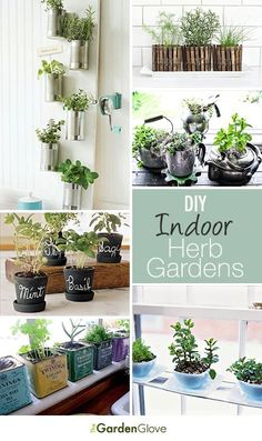 Inspired by home improvement ideas??!! Check THIS out!!! DIY Indoor Herb Gardens • Great Ideas & Tutorials!
