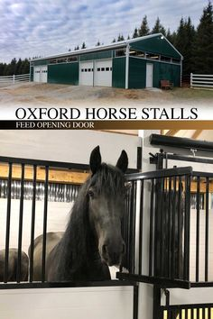 Keep an eye on everything in your stall with the Oxford welded horse stall front that comes with a feed door and full grill door kit. Our Oxford welded horse stalls are constructed of hot-dip galvanized steel (14-gauge frame), feature hidden interior welds, and offer the best type of rust protection available! RAMM is the industry's premier hot-dip galvanizer for horse stalls. #rammstalls #oxfordstalls #horsestalls #horsestable #dreambarn #barn #horses #equestrian #farm #feeddoor