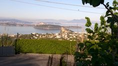 Salendo verso Fiaiano...  #ischia