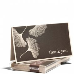 Ginkgo Gratitude
