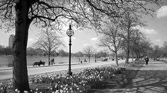 Imágenes y fotos en blanco y negro. - Página 11