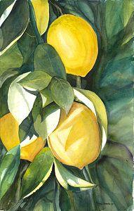 Lemons Art Print by Ileana Carreno