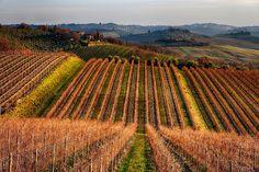 Toscana Chianti    #TuscanyAgriturismoGiratola