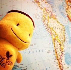 #myforeverdream travel around the world!!