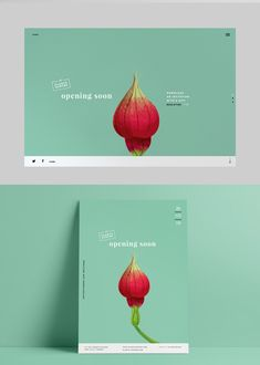 Plants Hunter by Ola Kusmider  Landing page and poster