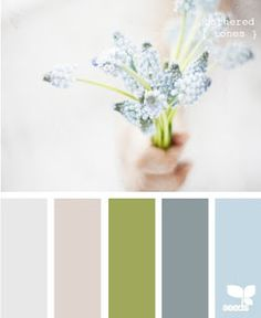 design seeds color palette- potential for the master bedroom