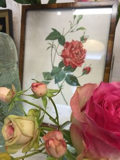 Workshop Roses , June 2015, made by Geschikt Groen Geschikt.