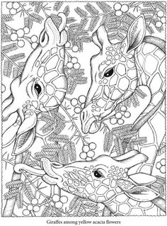 Free Coloring Pages For Adults | POPSUGAR Smart Living Photo 2