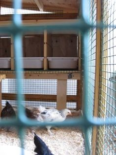 #Ikea hack chicken coop