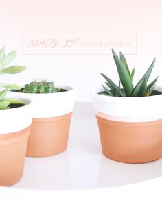 MADE IT: Striped Terra-Cotta Pots  #DIY #succulents by journal.eimyandco.com