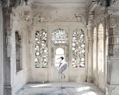 Karen Knorr - A Place Like Amravati, Udaipur City Palace, Udaipur from India Song series, 2008-2012 Photography