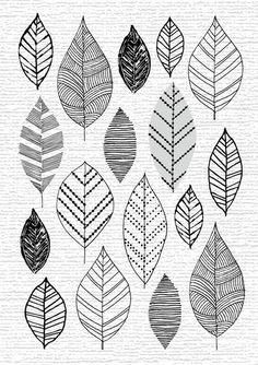 Doodles Flower Drawings Save Eloise Renouf: style leaf and flower prints Doodles Zentangles, Zentangle Patterns, Leaf Drawing, Painting & Drawing, Doodle Drawings, Doodle Art, Flower Prints, Leaf Prints, Art Prints