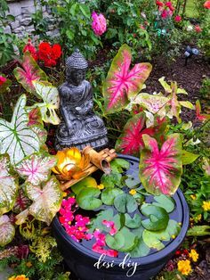 Indoor Zen Garden, Small Balcony Garden, Small Balcony Decor, Bali Garden, Balcony Flowers, Balcony Gardening, Ethnic Home Decor, Quirky Home Decor, Indian Home Decor