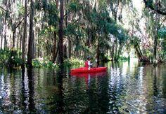 The Ritz-Carlton Orlando Grande Lakes -
