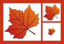 Bring creativity into your classroom with new lesson topics every week. Innovative, active learning ideas by subject, theme, month, and more. Maple Leaf Pictures, Maple Leaves, Picture Cards, Fall Crafts, Learning Activities, Elementary Schools, Kindergarten, Games, Children