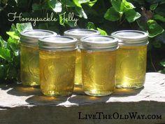 Honeysuckle Jelly a