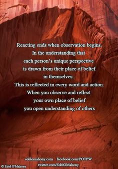 Reacting ends when observation begins. In the understanding that  each person's unique perspective  is drawn from their place of belief in themselves.  This is reflected in every word and action. When you observe and reflect  your own place of belief you open understanding of others © Edel O'Mahony