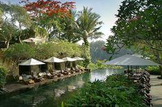 The Wedding Guru: Maya Ubud | Great Destination Weddings