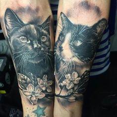 Tattoos - Gatos realistas en negro y gris - realistic cats in black and grey - 117459