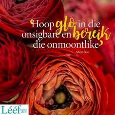 Afrikaans Quotes, Verses For Cards, Hart, Cabbage, Bible Verses, Cabbages, Scripture Verses, Bible Scripture Quotes, Bible Scriptures