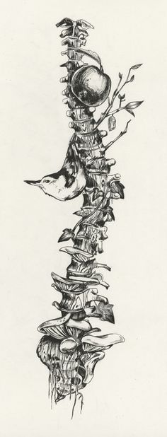My Weird Obsession With Anatomical Parts & Birds :)