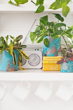 Upcycle Old Cans into Stylish Copper Planters