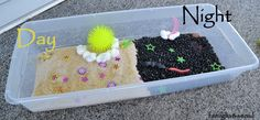 Day and Night Sensory bins from Connecting Family and Seoul: Celebrating the Summer Solstice