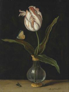 Balthasar van der Ast (Middelburg Delft) , The 'Zomerschoon' tulip Delft, Dutch Still Life, Still Life Art, Art Floral, Painting Inspiration, Art Inspo, Floral Illustration, Tulip Painting, Vanitas