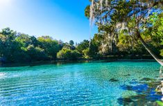 15 Best Day Trips from Jacksonville, FL - The Crazy Tourist Florida Camping, Florida Travel, Go Camping, Florida Activities, Places To Travel, Places To Go, Urban Park, Jacksonville Florida, Travel Around