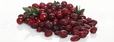 Star of the Week: Cranberries Juice:  All berries possess a somewhat royal (if you will) quality, and cranberries are no exception. This crimson hued berry has been believed to offer a vast range of health benefits, of which its role in treating and preventing Urinary