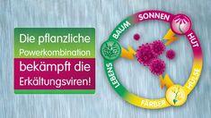 Esberitox der Erkältungsverkürzer Plants