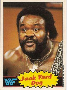 WWF Magazine 1999   1985 WWF Topps Pro Wrestling Stars:Series 1   The Wrestling Card Price ...
