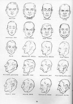 Male head shapes chart.