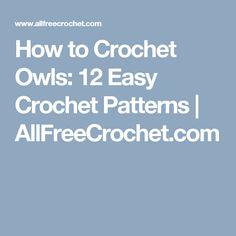 How to Crochet Owls: 12 Easy Crochet Patterns | AllFreeCrochet.com