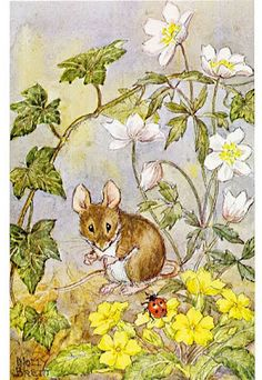 Vintage Postcard; Mouse to Ladybug What Lovely Spots! Molly Brett Pk 424 Medici