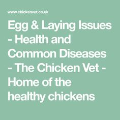 Egg & Laying Issues - Health and Common Diseases - The Chicken Vet - Home of the healthy chickens
