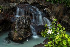 Sweet Fall by clodinetrueba #nature #mothernature #travel #traveling #vacation #visiting #trip #holiday #tourism #tourist #photooftheday #amazing #picoftheday