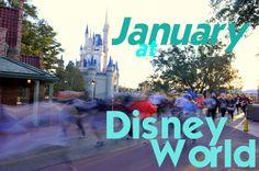 January 2014 at Disney World