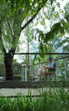 선유도공원에서 독서하는 할아버지