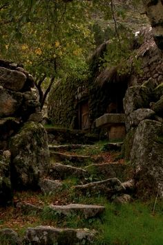 Foto Fantasy, Dark Fantasy, Garden Stairs, House Stairs, Stone Stairs, Slytherin Aesthetic, Nature Aesthetic, Fantasy Landscape, Abandoned Places