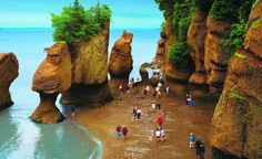 People walking on the ocean floor at Hopewell Rocks in New Brunswick. Bay of Fundy, Nova Scotia, Canada. Tide changes every 6 hours. High and low tide vary by 50 feet, the greatest height in the world. Photo: New Brunswick Tourism and Parks East Coast Travel, East Coast Road Trip, Road Trip Usa, Places To Travel, Places To See, New Brunswick Canada, Canada Travel, Canada Trip, Canada Eh