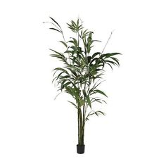 Tall Faux Green Bamboo Palm Tree | fake flowers | faux house plants | The Farthing