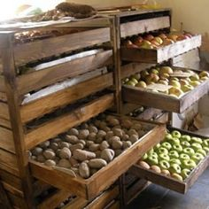 Root cellar storage/ what to do AFTER harvest… Great idea for bulk storage, to. Root cellar storage/ what to do AFTER harvest… Great idea for bulk storage, too. Homestead Survival, Survival Food, Survival Tips, Survival Quotes, Survival Supplies, Survival Shelter, Emergency Preparedness, Off The Grid, Farm Gardens