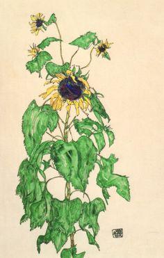 Egon Schiele flowers | Above: Egon Schiele, Sunflower, 1916, Collection of the Neue Gallerie ...