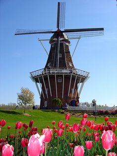 Holland- DeZwaan Windmill!