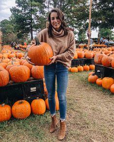 Kjp Fall Wallpaper Pumpkins Of Every Color At The South Carolina Farmers